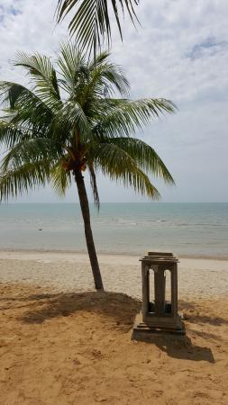 ذا ريجينسي تانجونج توان بيتش ريزورت: Beach