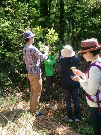 Japan Outdoor Education Tajima Ojiro Outdoor School Day Tour