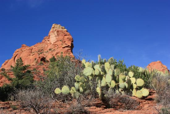 Villas of Sedona: Not too far from the resort...Soldiers Pass