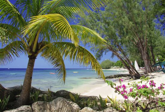 Holetown, Barbados: Beach