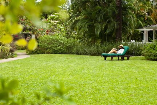 Holetown, Barbados: Gardens