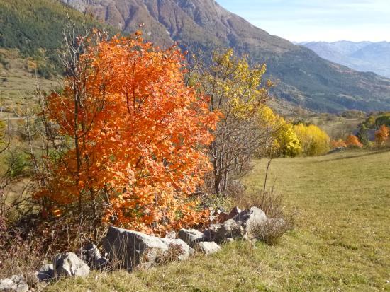 Reallon, Frankrig: douceur d'automne