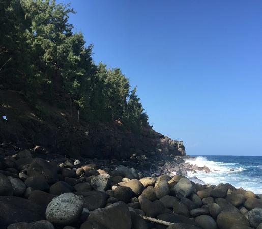 Paia, هاواي: IMG_20160115_212558_large.jpg