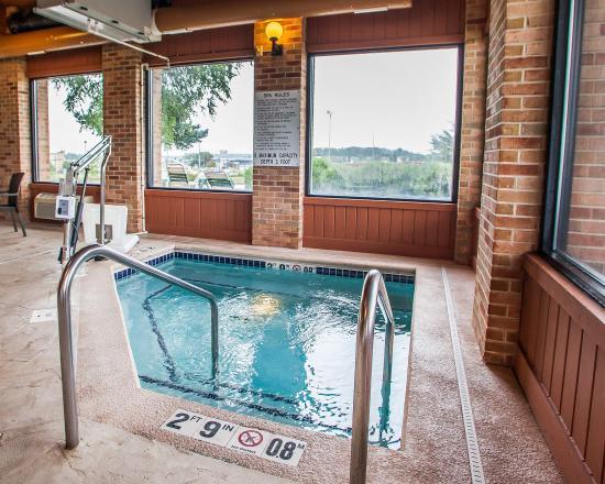 Comfort Inn Waverly: Pool