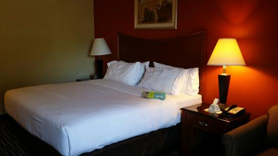 Holiday Inn Express Fayetteville - Ft. Bragg: King room