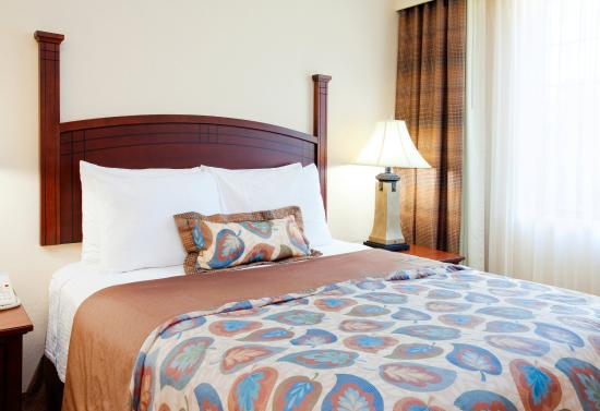 Staybridge Suites Durham-Chapel Hill-RTP: Studio Suite