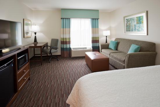 Hampton Inn & Suites Minneapolis / West-Minnetonka : King Room with Sofa bed