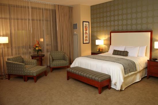 Jumers Casino Hotel: Suite
