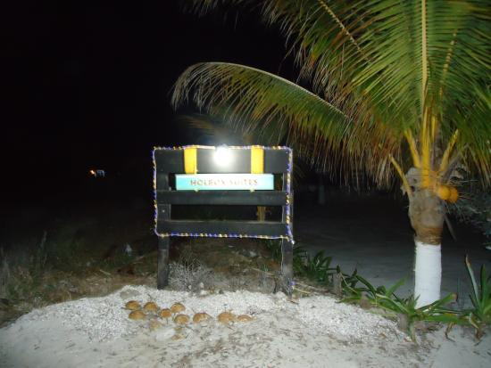 Holbox Suites Photo