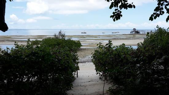 Fundu Lagoon: 20160312_122346_large.jpg