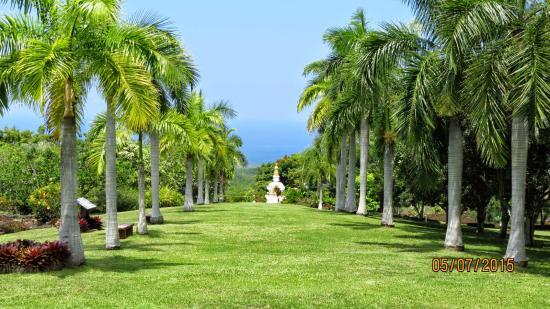 Paleaku Gardens Peace Sanctuary: :o)
