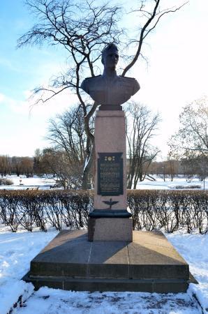 Bust V.I. Rakova