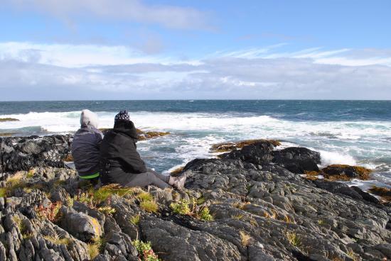 Gamvik Municipality, Noruega: Суровый Северный Ледовитый океан
