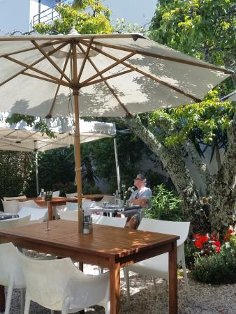The Plumm: Swiss Garden Cafe courtyard Sunny, bright and comfy