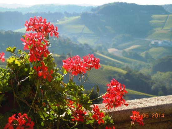 L'Angolo di Rosina : Piamontes kullar