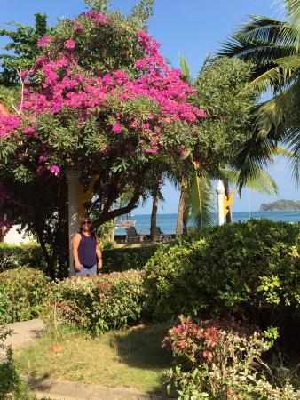 Holiday Villa: 10 m fra bassenget, 50 m til stranden