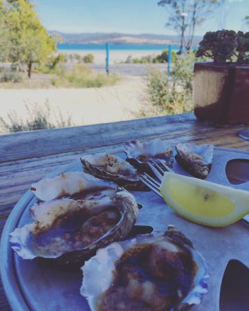 Great view and fresh oysters