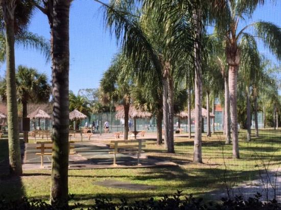 Caliente Club & Resorts: View from patio of tennis courts
