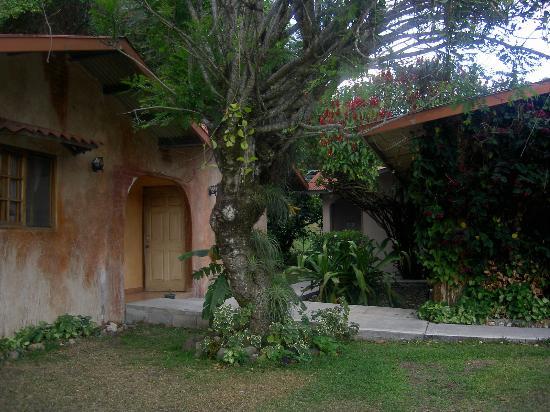 Valle Primavera: Property