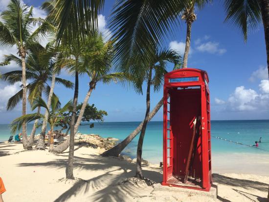 Luxury Safari Antigua Near Coconut Grove