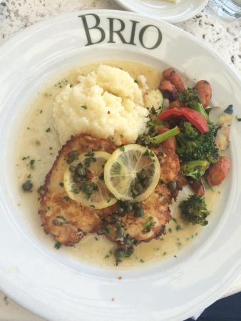 Brio Restaurant Hollywood Fl
