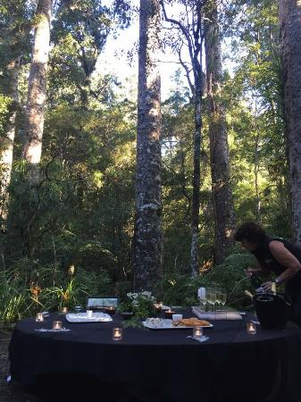 Okaihau, Nya Zeeland: Canapés and bubbly in the forest. Fantastic food by Colin Ashton.