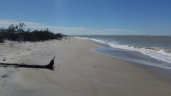 Boca Grande, FL: Beautiful beach