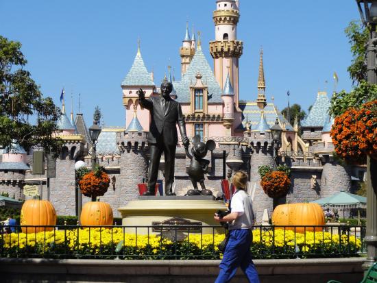 Disney Adventure Tours Reviews