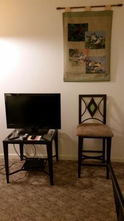 Laurel Inn Condominiums: Living room T.V.