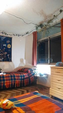 Plantas & Blanco's Hostel : IMG_20160310_222939469_large.jpg