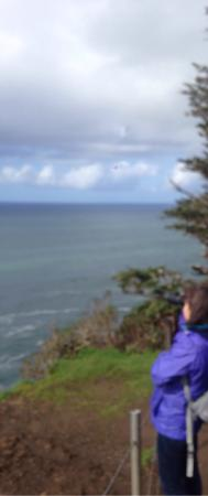 Cape Lookout State Park: photo2.jpg