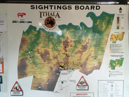 Game sightings board at reception area picture of ntshondwe lodge ntshondwe lodge game sightings board at reception area gumiabroncs Image collections