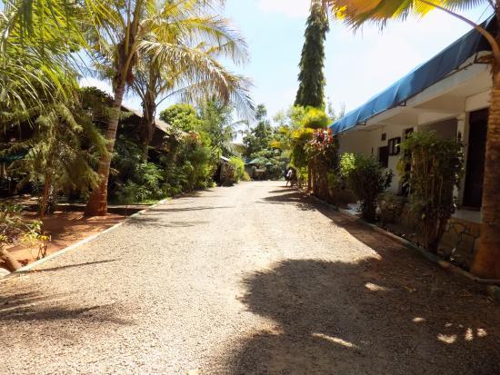 Impala Safari Lodge: Driveway
