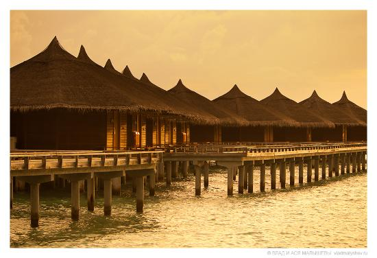 Kuramathi: water villas