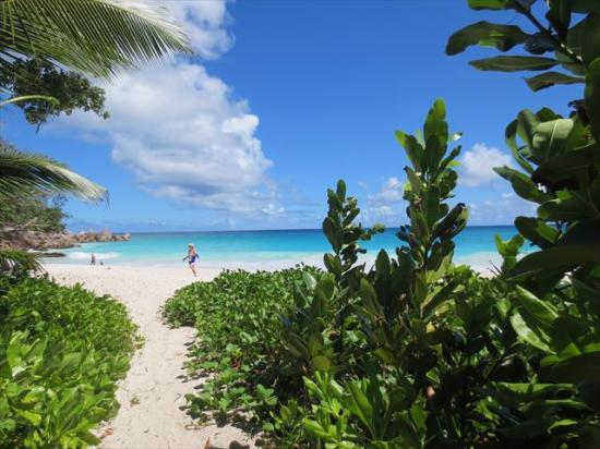 Νήσος Πράσλιν, Σεϋχέλλες: ビーチへの入り口です。