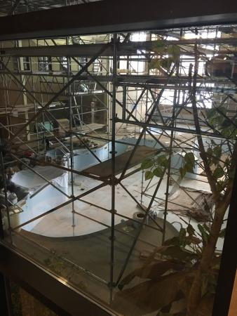 Clarion Hotel Winnipeg: The entire pool facility is being renovated !!! Can't wait to experience the new pool very soon