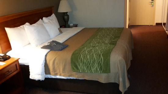 Comfort Inn Dulles International Airport: Das bequeme Bett