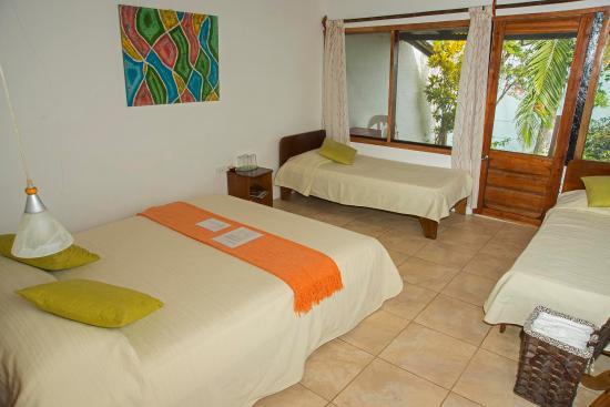 El Acantilado Beach Hotel: Nuestras suites tienen una cama matrimonialy 2 sencillas. Balcon con hamaca. vista al mar