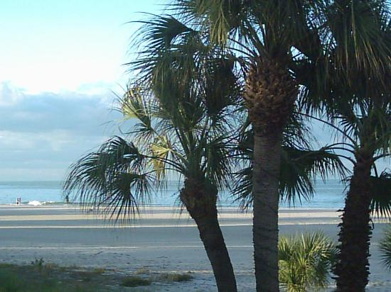 Suncoast Motel: view from the room