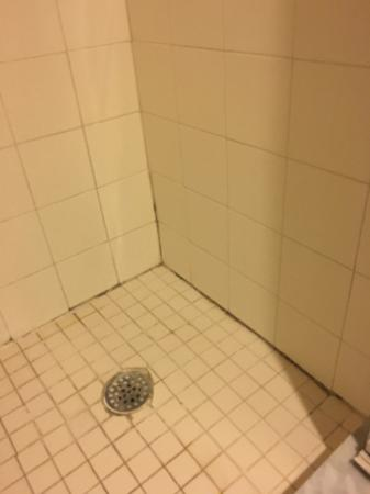 The Historic Peninsula Inn: Mold along shower floor