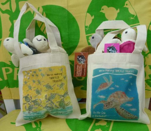 Holetown, Barbados: Cute turtlets in mini totes!