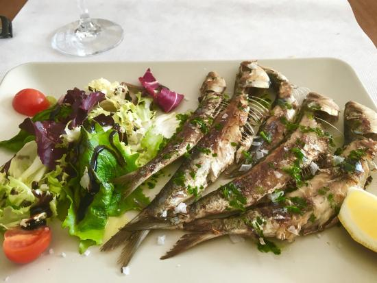 Restaurante El Balear: Great restaurant with fabulous fresh seafood and good service