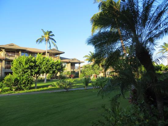 Halii Kai Resort at Waikoloa Beach: View from Unit 20E