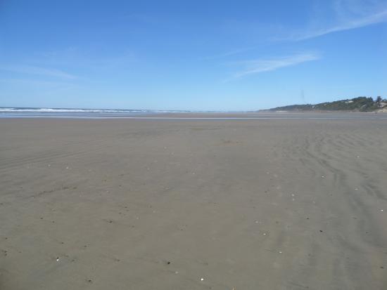 Driftwood Beach State Recreation Site Photo