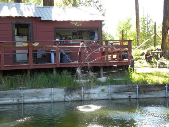 Foto South Lake Tahoe