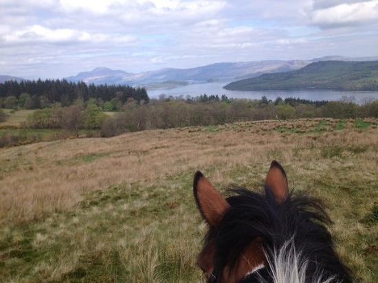 Loch Lomond Pony Trekking