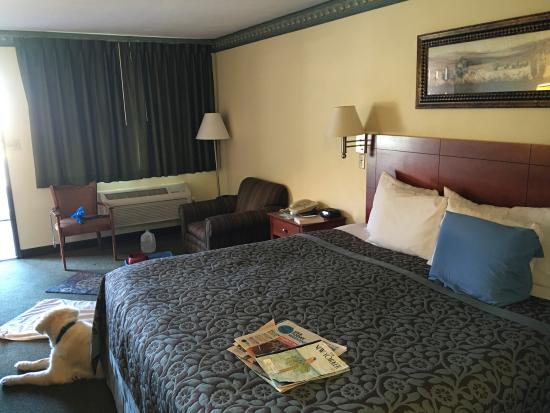 Days Inn Rio Rancho: our room (with dog)
