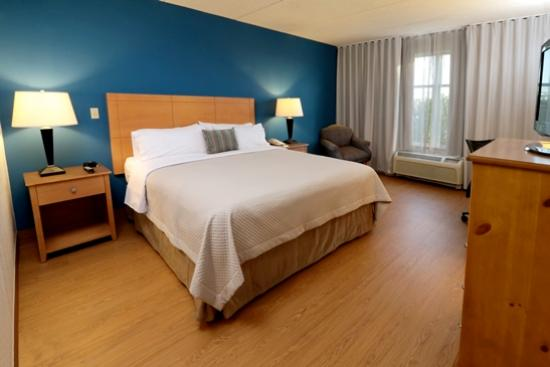 Smart iStay Hotel in McAllen: STANDARD ROOM