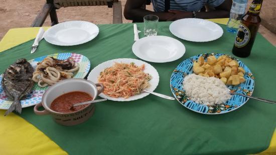 Colobus Shade: il pranzo è servito