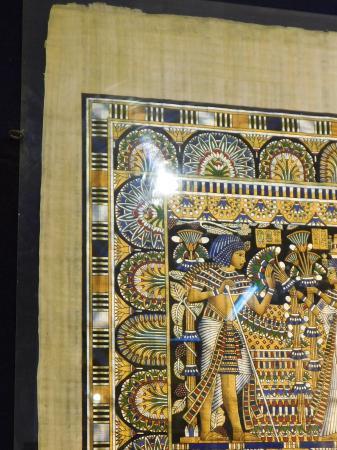 Papyrus Institute: Spectacular colours